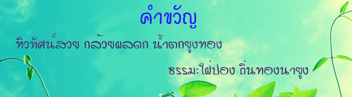 nayung_slide_2